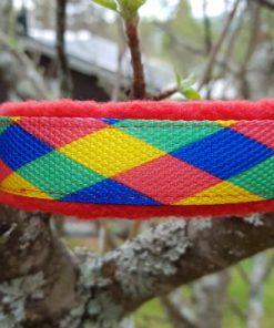 Hundhalsband 27 är ett hundhalsband som finns i olika storlekar och olika mönster. Vi skickar över hela landet mot en fraktavgift.