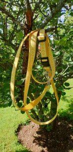 Gult koppel med daladekor som mönster med ställbart hudhalsband